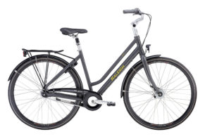 Raleigh Kent i mat grå 2017 model