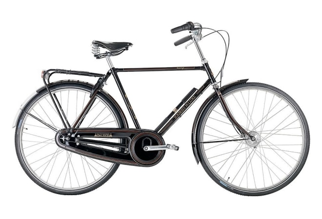 Raleigh Tourist de Luxe 7 gear - 2020