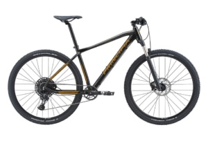 Principia Evoke A9.9 Air 29in SRAM NX 1x12sp Hydr. disc Sort m. guld