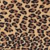 Cover Leopard Til Hövding 3